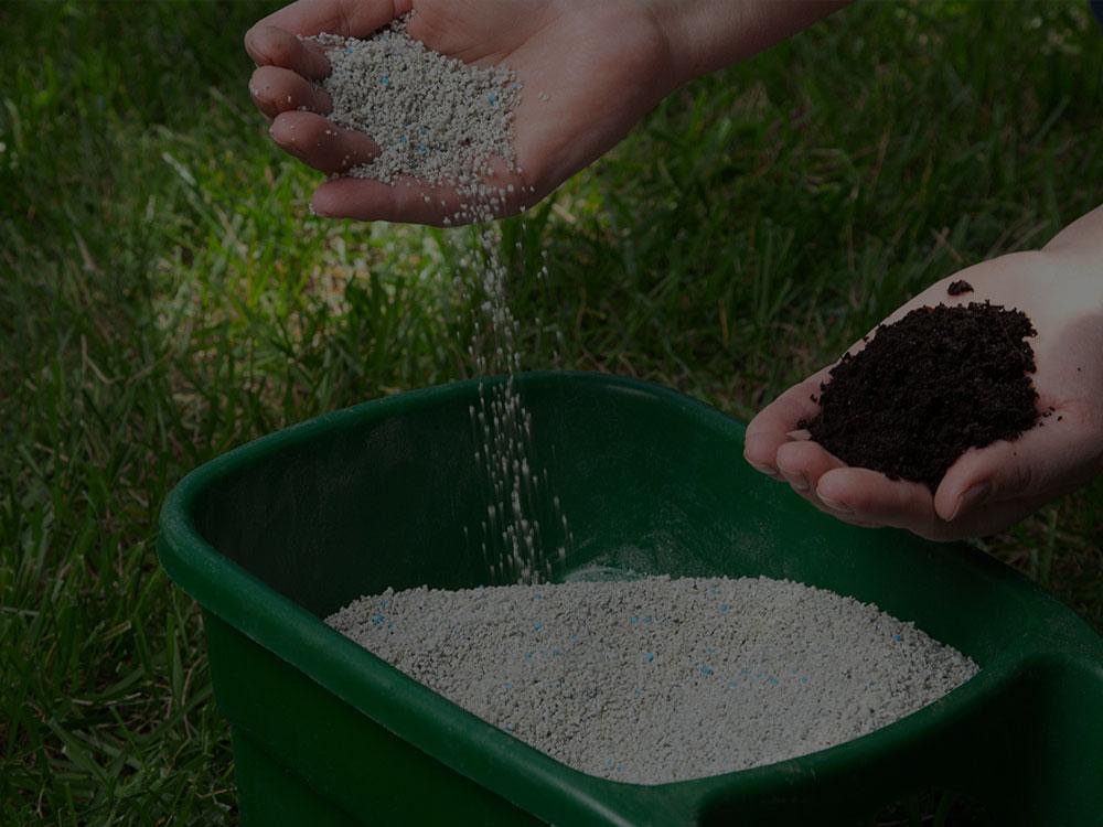 Katy Fertilization